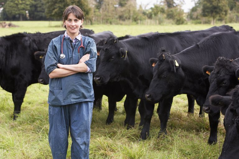 Farm Babe: Antibiotic resistance from livestock to humans, easily explained - AGDAILY.COM