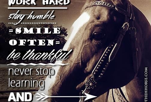 Never Stop Learning – Road to the Horse