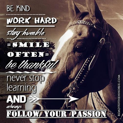 Never Stop Learning - Road to the Horse