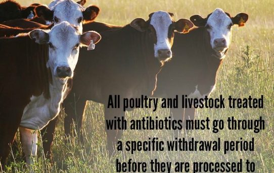 Did You Know – Animal Agriculture Alliance