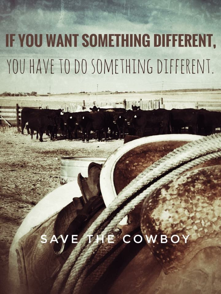 Find Your Dream - Save the Cowboy