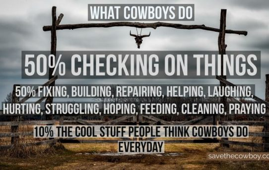 What Cowboys Do – Save the Cowboy