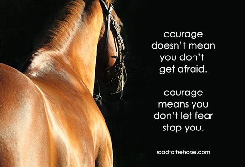 Courage – Road to the Horse