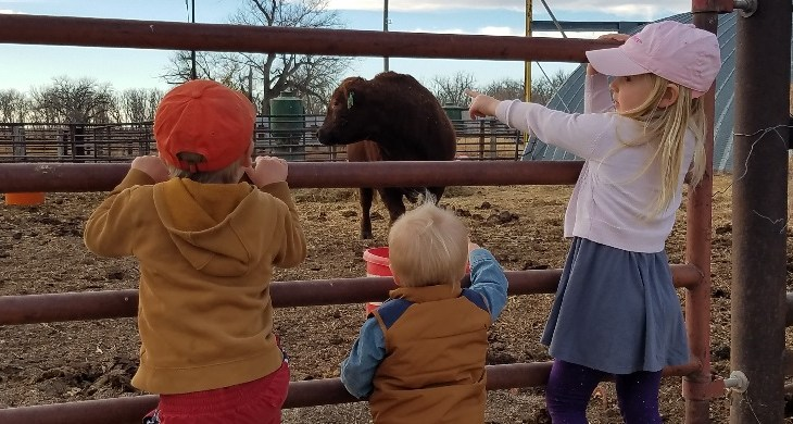 Why it's important kids learn about modern agriculture - Ag in the Forefront